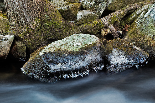 Frosty rocks above a flowing cold Middle Branch of the Swift River heading towards the Quabbin Reservoir.