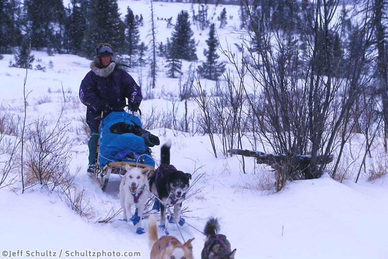 D Jonrowe Mushes on Trail to Don's Cabin 99 Iditarod AK