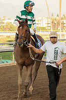 ARCADIA, CA   FEBRUARY 3 : #3 Accelerate, ridden by Victor Espinoza, return to the connections after winning the San Pasqual Stakes (Grade ll) on February 3, 2018 at Santa Anita Park in Arcadia, CA.(Photo by Casey Phillips/ Eclipse Sortswire/ Getty Images)