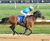Desert Honour winning at Delaware Park on 9/2/15