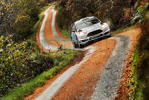 14.11.2015. Wales. WRC Rally of Great Britan. Stages 11-14, Wales.  <br />