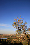 Israel, Shephelah, a view of Ayalon valley from Park Canada