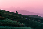 rolling hillsides at dusk near Zigui, Three Gorges area, China, Asia