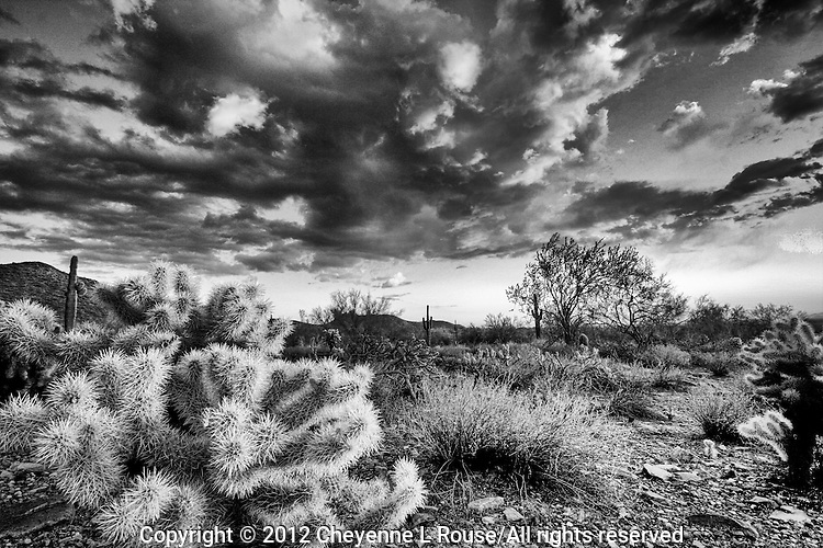 McDowell Mountain Desertscape - Arizona (BW) Scottsdale - dramatic clouds