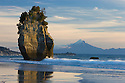 Sea stack with Mount Taranaki (Mount Egmont) in background,  North Taranaki Bight