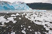 Icebergs stranded ashore along Meares tidewater glacier, Prince William Sound, Alaska
