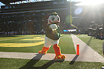 Nov 21, 2015; Eugene, OR, USA; The Duck points to the camera at Autzen Stadium. <br /> Photo by Jaime Valdez