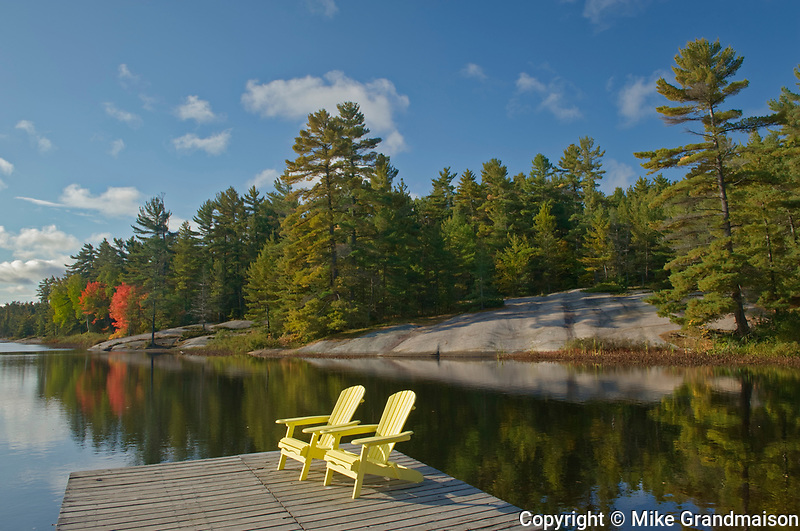 Muskoka (Adirondack) chairs and Red maple tree (Acer rubrum) at Grundy Lake<br />