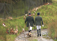 Bleasedale Beagles, Dinkling Green.