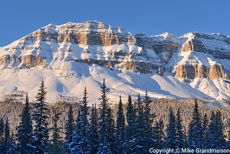 The Canadian Rocky Mountains in evening light, Banff National Park, Alberta, Canada
