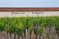 Chateau Ferrand and vineyard with sandy clay soil  Pomerol  Bordeaux Gironde Aquitaine France