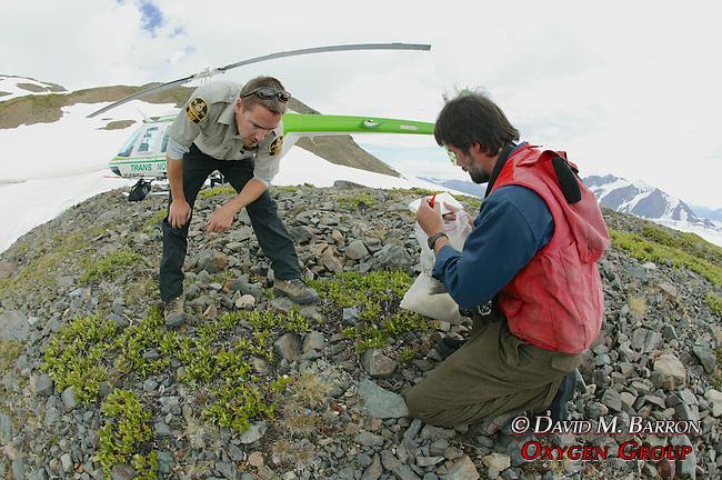 Bruce Bennett & Scott Collecting Plants