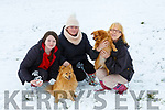 Danielle Moriarty, Norita Brosnan, and Jackie Nelligan play with Hunter and Bailey in Currow on Friday