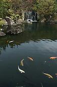 Apr. 06, 2010; Himeji, Japan - Himeji Castle Nishi-Oyashiki-ato Garden.