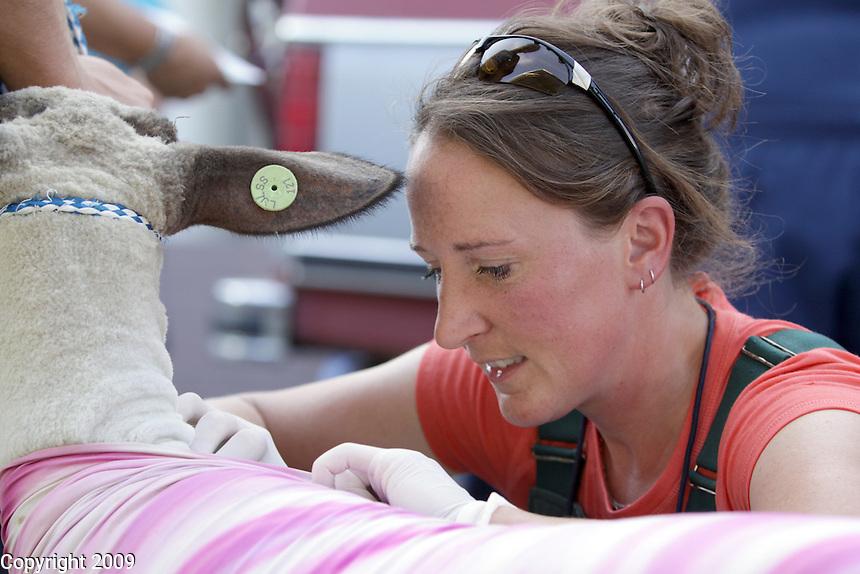 NW Washington Fair on August 19, 2009. Photo by Meryl Schenker..