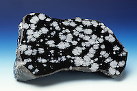 Snowflake obsidian.  Extrusive igneous rock found in areas of recent vulcanism. The snowflake-like blotchy spots (spherulites) are inclusions of radially clustered crystals of cristobalite (a form of quartz).
