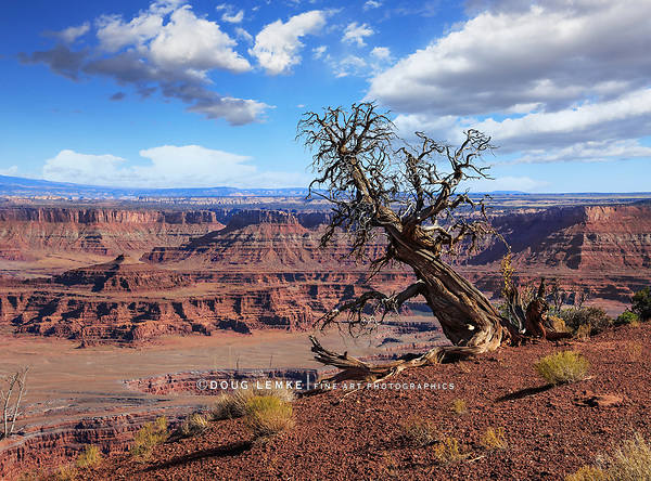 Dead Horse Point State Park, Utah, USA