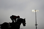 HONG KONG - DECEMBER 12:  A jockey riding a horse is silhouetted during the Cathay Pacific International Races at the Sha Tin Racecourse on December 12, 2010 in Hong Kong, Hong Kong. Photo by Victor Fraile / The Power of Sport Images