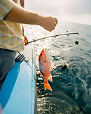 USA, Florida, man with red snapper on boat,  Destin