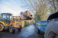 Saturday 10 January 2015<br /> Pictured: JCB removes fallen tree<br /> RE: Severe gales across Wales break in half a 100 year old beech tree from a garden falling across Penllwyn Lane in Graig-Y-Rhacca, Caerphilly, road closed.