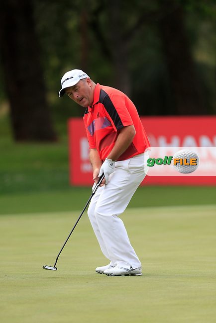 Damien McGrane (IRL) on the 16th geen during Round 2 of the ISPS HANDA Perth International at the Lake Karrinyup Country Club on Friday 24rd October 2014.<br /> Picture:  Thos Caffrey / www.golffile.ie