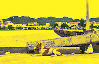 A dog lays on a pier in the sun in Thailand.