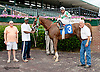 Photogenic winning at Delaware Park on 7/9/14