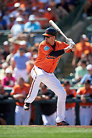 Baltimore Orioles catcher Matt Wieters (32) at bat during a Spring Training game against the Minnesota Twins on March 7, 2016 at Ed Smith Stadium in Sarasota, Florida.  Minnesota defeated Baltimore 3-0.  (Mike Janes/Four Seam Images)