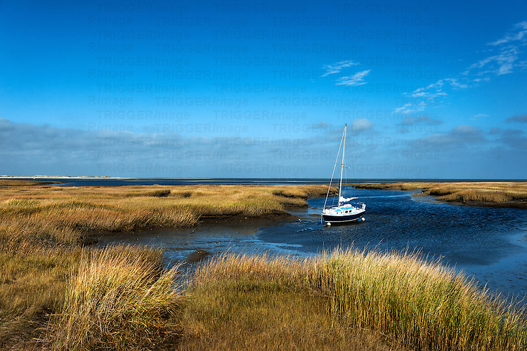 Sailboat anchored in salt marsh, Wharf Lane, Yarmouthport, Cape Cod, Massachusetts, USA