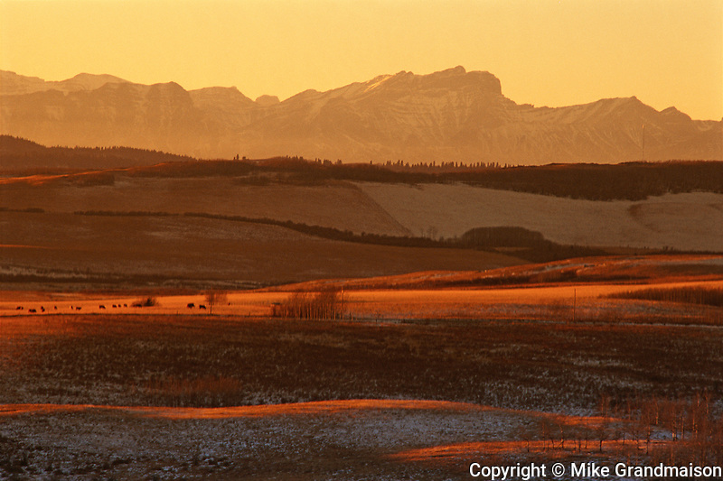 Foothills and Rocky Mountains at sunset<br /> Cochrane<br /> Alberta<br /> Canada