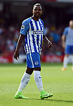 Jose Izquierdo of Brighton & Hove Albion during the premier league match at the Vicarage Road Stadium, Watford. Picture date 26th August 2017. Picture credit should read: Robin Parker/Sportimage