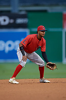 Lowell Spinners shortstop Antoni Flores (19) during a NY-Penn League Semifinal Playoff game against the Batavia Muckdogs on September 4, 2019 at Dwyer Stadium in Batavia, New York.  Batavia defeated Lowell 4-1.  (Mike Janes/Four Seam Images)