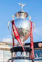 Picture by Allan McKenzie/SWpix.com - 17/04/2015 - Rugby League - Ladbrokes Challenge Cup - Wakefield Trinity Wildcats v Halifax RLFC - Rapid Solicitors Stadium, Wakefield, England - Ladbrokes Challenge Cup.
