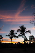 Aldeia Baú, Para State, Brazil. Colourful sunset with palm trees.
