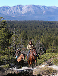 Images from a horseback ride on Powerline Trail in South Lake Tahoe, Ca., on Tuesday, Nov. 29, 2011..Photo by Cathleen Allison