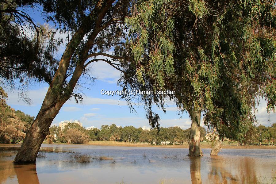 Israel, Sharon region, the rain pool in Netanya