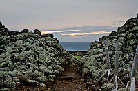 Mo'okini Luakini Heiau, in winter, late afternoon and sunset, North Kohala, Big Island.