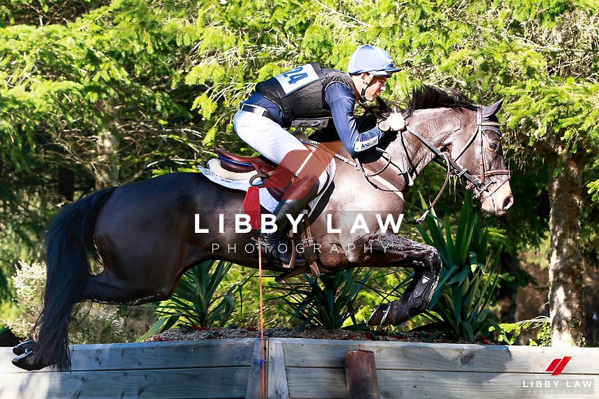 Jonathan Paget rides Angus Blue to keep the lead during the NRM CIC3* Cross Country at the 2017 NZL-NRM National Three Day Event Championships. National Equestrian Center, Taupo. Saturday 13 May. Copyright Photo: Libby Law Photography