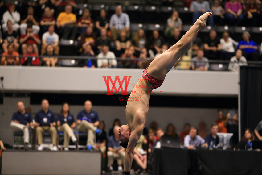 The Ohio State University men's swimming and diving team compete at the 2017 NCAA National Swimming and Diving Championships in Indianapolis, IN. March 24, 2017<br /> (Photo by Walt Middleton Photography 2017)