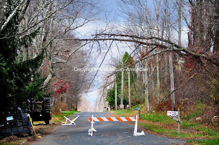 PLYMOUTH, CT, 01 NOV 12-11012AJ01- A relatively small tree, untouched three days after Hurricane Sandy left much of Plymouth unscathed, hangs over Town Hill Road on power lines Thursday. The neighborhood is one of the only areas in town without power and residents are frustrated.  Alec Johnson/ Republican-American