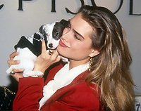 Brooke Shields 1990<br /> Photo By John Barrett/PHOTOlink.net