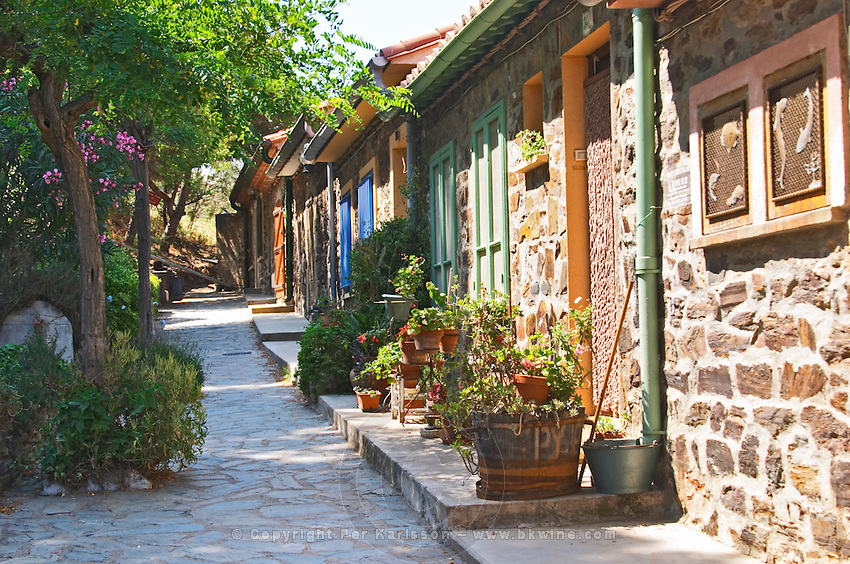 A narrow street in the old town. Houses in the upper part of the old town that used to be the living quarters of seafaring military seamen. Collioure. Roussillon. France. Europe. Colourful houses, trees and flowers make the village very pretty.