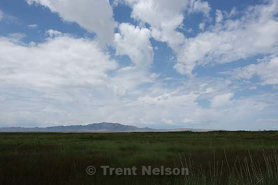 clouds and antelope island. wetlands.Tuesday June 9, 2009 in Farmington.