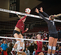STANFORD, CA - November 3, 2018: Holly Campbell at Maples Pavilion. No. 1 Stanford Cardinal defeated No. 15 Colorado Buffaloes 3-2.