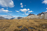Arctic National Wildlife Refuge, Brooks Range, Arctic Alaska.