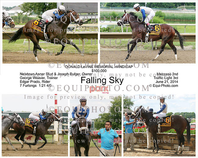 Falling Sky #6 with Edgar Prado riding won the $100,000 Donald LeVine Stakes at Parx Racing in Bensalem, Pennsylvania June 21, 2014.  Photos By: Matthew Donohue & Barbara Weidl - EQUI-PHOTO