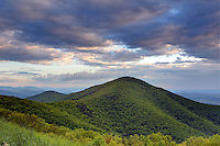 Blue Ridge Mountains from the Shenandoah National Forest. Photo/Andrew Shurtleff