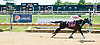 Southern Beach winning at Delaware Park on 8/5/13