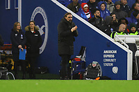 Norwich City manager Daniel Farke during Brighton & Hove Albion vs Norwich City, Premier League Football at the American Express Community Stadium on 2nd November 2019