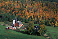 AJ1989, farm, Vermont, barn, fall, A scenic view of a farm with a red barn with silos in the fall foliage in Barnet Center.